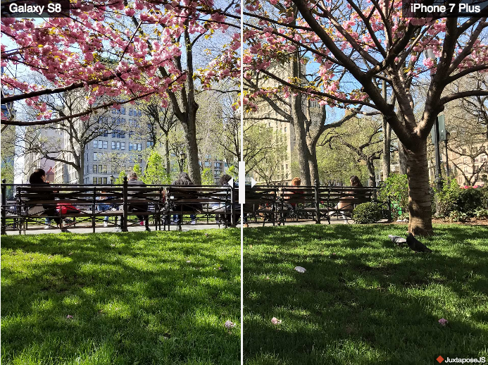 Comparativa Fotos luz brillante Samsung Galaxy S8+ iPhone 7