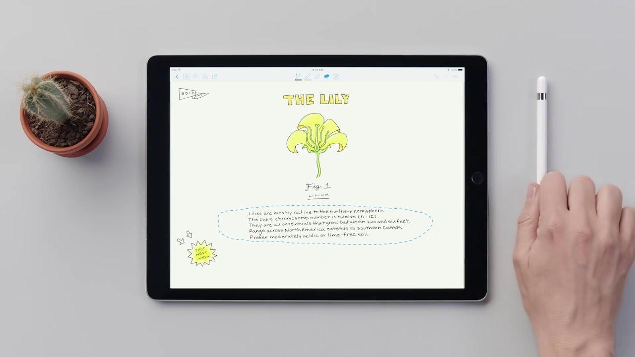 Apps de notas en iPad