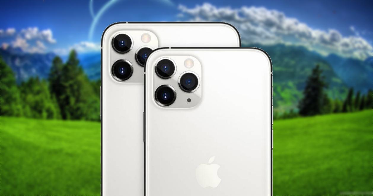 Fotos con zoom iPhone 11