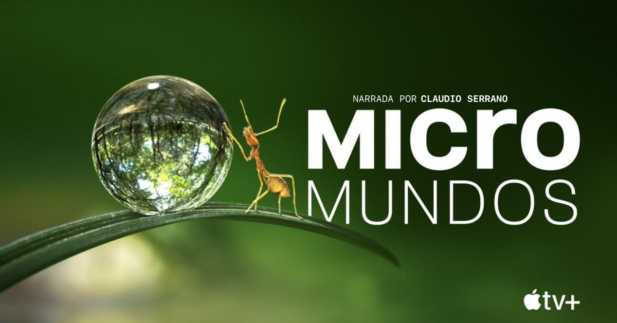 Micromundos documental Apple TV+ - Tiny World
