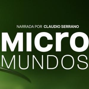 Micromundos icono