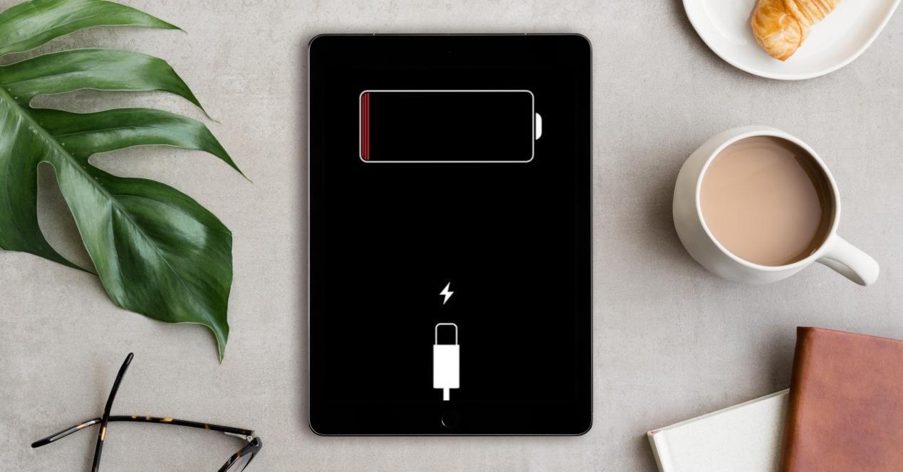 Cargadores para iPad
